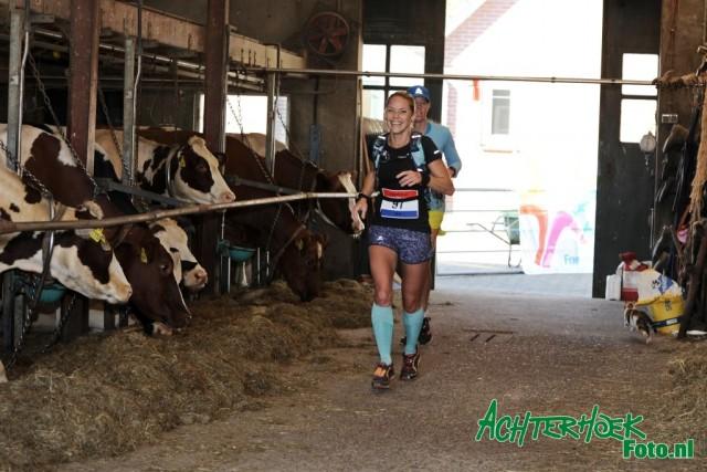 Lochemtrail: een run die de trailliefhebber gelopen móét hebben!